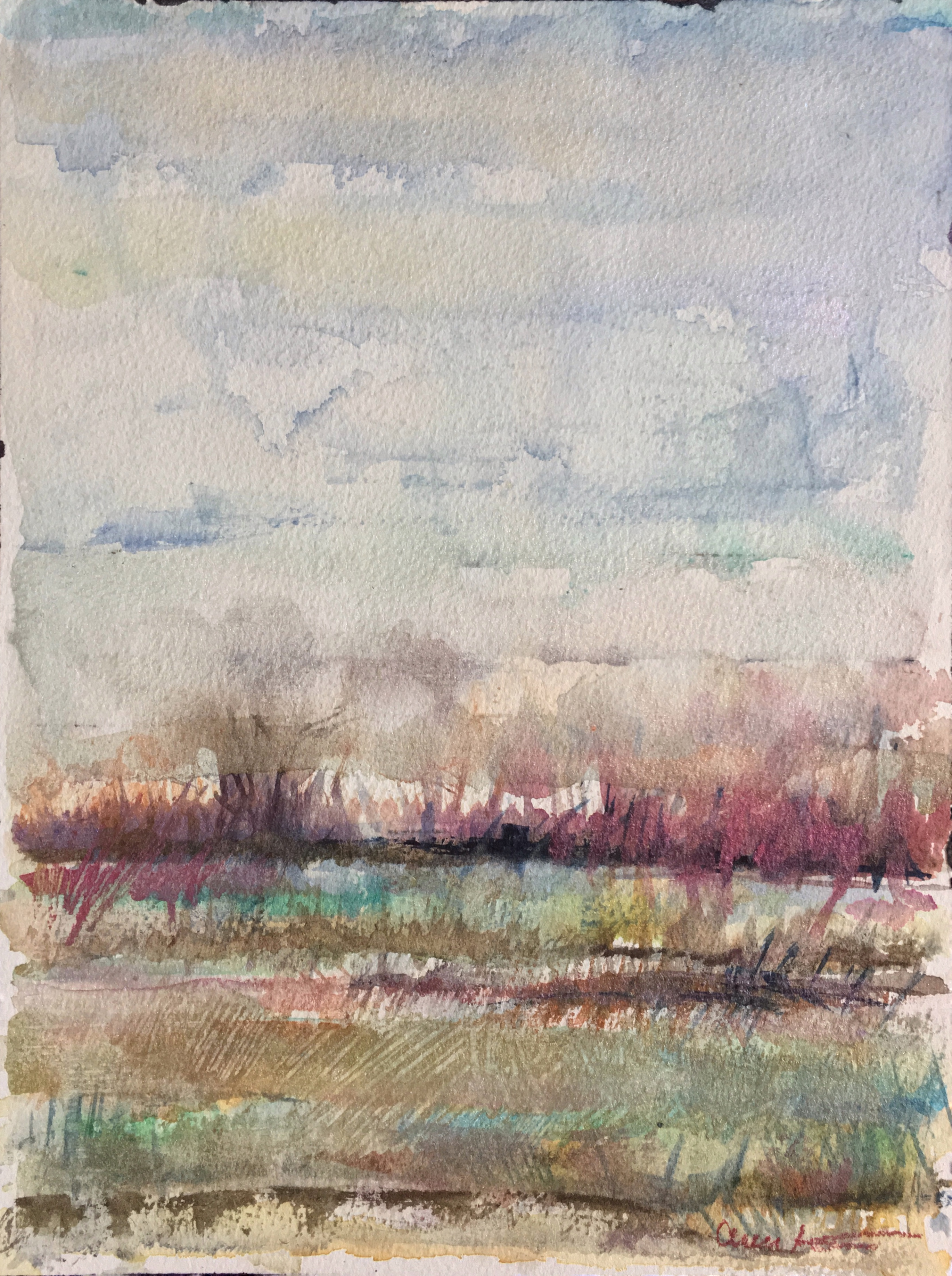 Floodplain by Ann Stretton