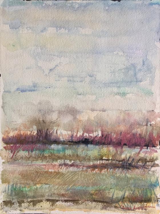 Floodplain by Ann Stretton