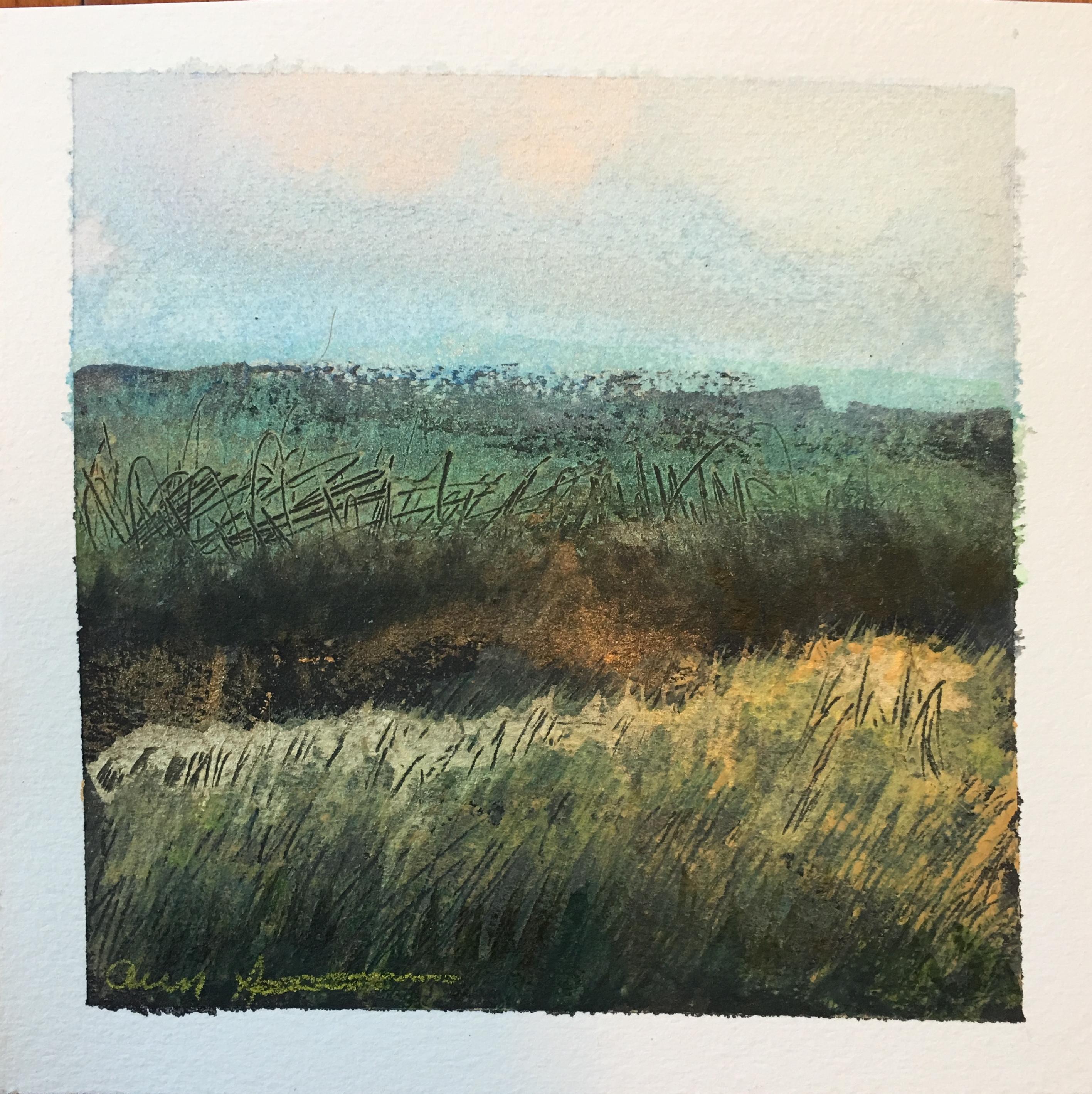Southern Dane by Ann Stretton