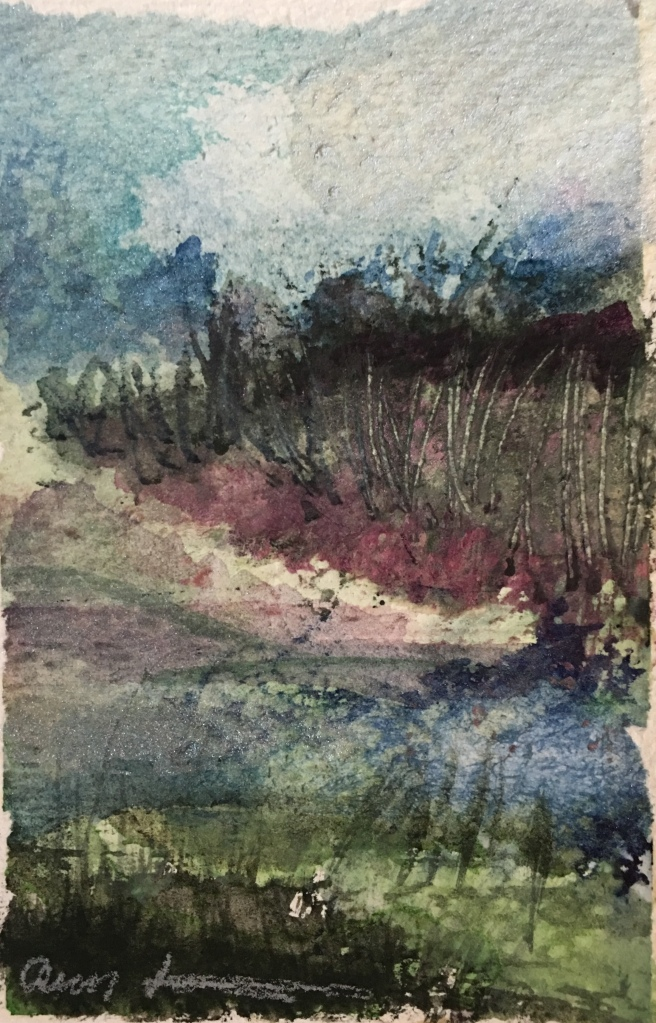 Disoriented Nature Walk by Ann Stretton