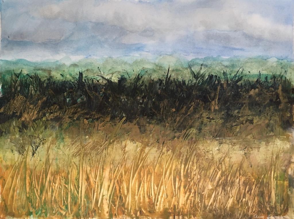 Fallowburn by Ann Stretton