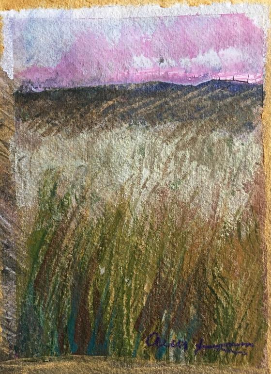 Pink Sunset by Ann Stretton