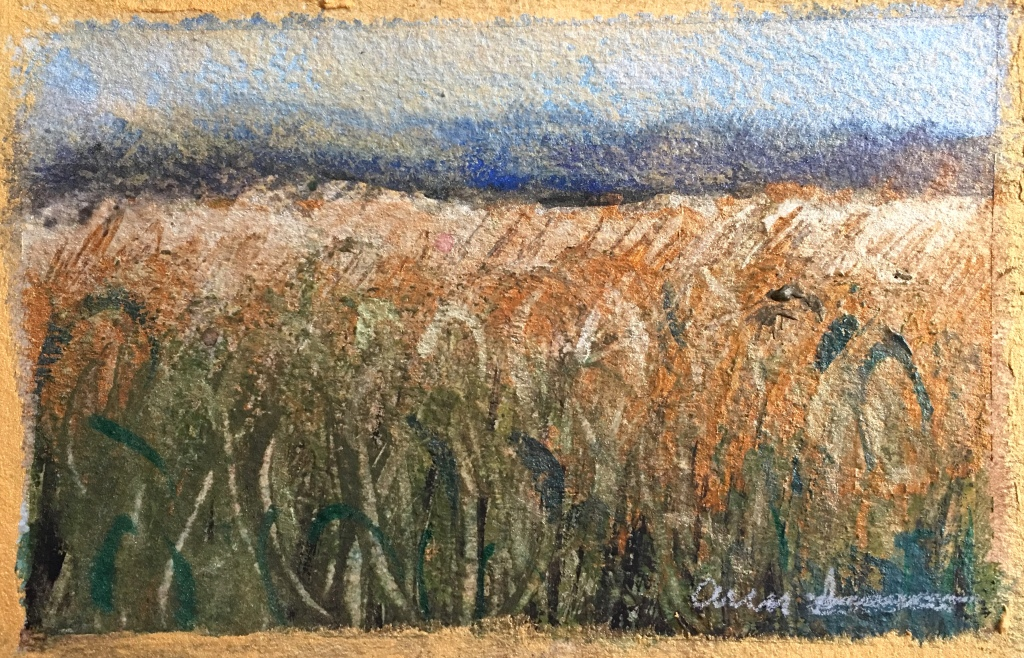 Postcard from Cornfield by Ann Stretton